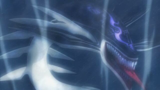 File:Orca's shadow.jpg
