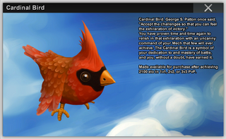 Cardinal Bird Full