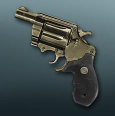 Holdout Pistol