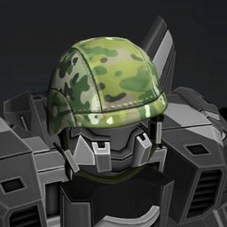 Camo Helmet Crop