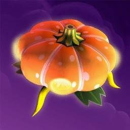 Saucer pumpkin