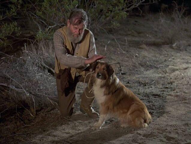 File:Old man with dog-random target.jpg