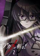 Akame ga Kill Vol. 2 Blu-ray (Japan)