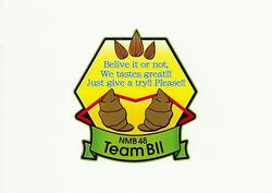 NMB48 Flag TeamB