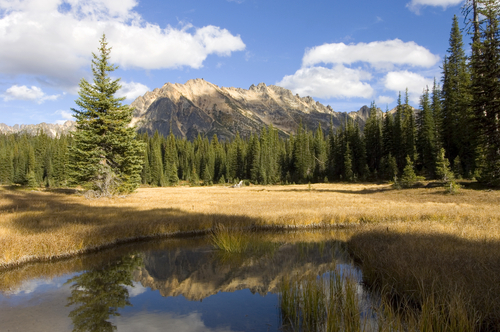 File:National park.jpg