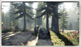 File:Elderwood National Park.jpg