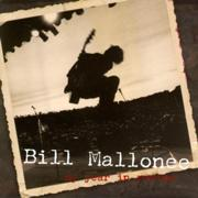 180px-Bill Mallonee - My Year in Review