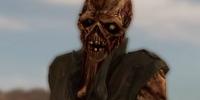 Sammy (Ghoul)