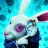 The White Rabbit Avatar