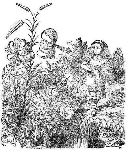 File:53flowers.jpg