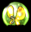 Superbuggyball