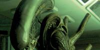 The Alien (Sevastopol)