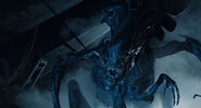 485px-AliensfilmQueen