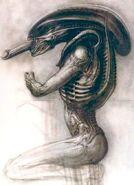 Alien Concept 1