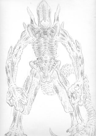 Elite Xenomorph by darthcooltax