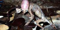 Metepec Alien