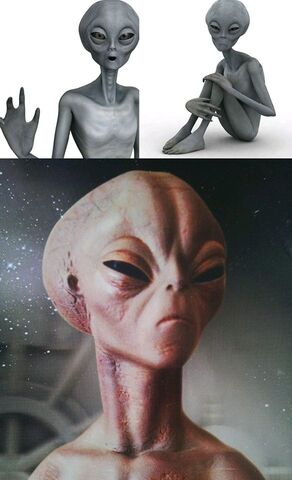 File:The Gliese aliens are from Gliese 86 and Gliese 59 near Zeta Reticuli in the Reticulum. Also the nearest neighbors to the Zeta Greys.jpg