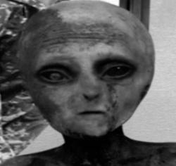 LNF Alien
