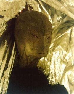 Reed Alien hoax