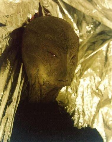 File:Reed Alien hoax.jpg