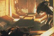 Alien3-02