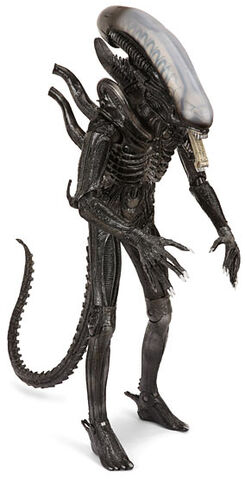 File:AlientheOriginalcostume.jpg