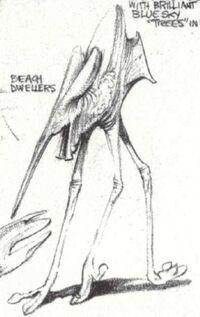 BeachDweller
