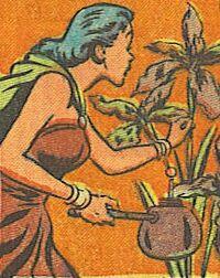 Oregus-plant