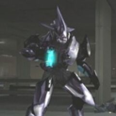 Sangheili Special Operations Officer