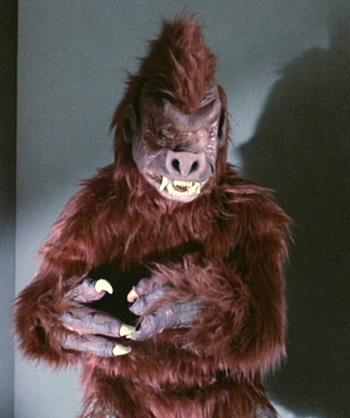 File:Anthropoid Ape.jpg