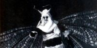 Menoptera