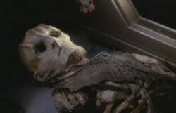 Cardassian skeleton