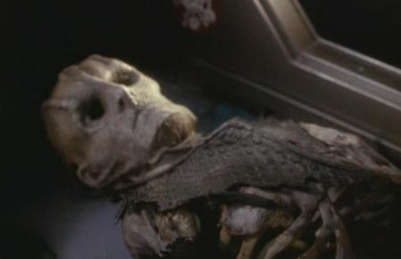 File:Cardassian skeleton.jpg