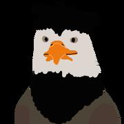 War Eagle portrait