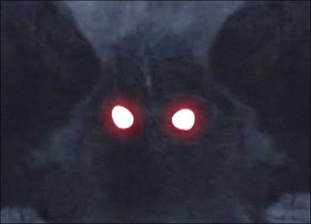 File:Mothman eyes.jpg