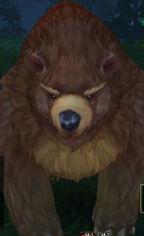 Taiga Bear