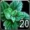 Allods herb mint