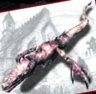 File:Phocomelus profile.jpg