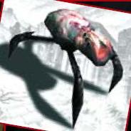 File:Arachnocid profile.jpg