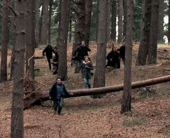 File:Snatchers chasing Harry Potter and Hermione Granger 03.jpg