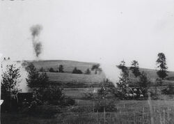 Artillery mures