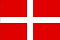 TSFWS New Kent Flag