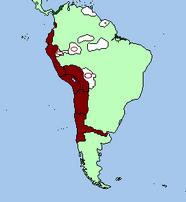 Expansion to the coast and amazonian vassalization