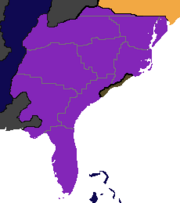 Roman Borealia 1795