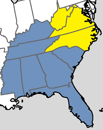 File:Dixie in the 2007 Referendum.png
