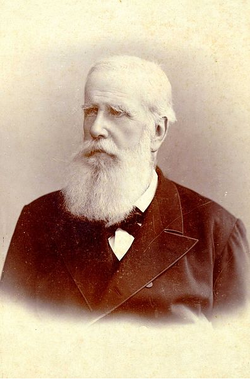 Pedro II of Brazil.PNG