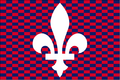 TSFWS Paris Flag