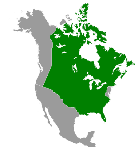 File:Quebec (Great Poland).png
