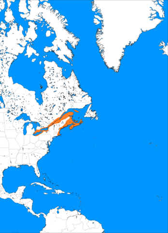 File:1250 neutral annextation and continued expansion haudensone are allowed to marry norse, massive boom, 500,000 people.png