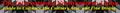 Miniatura da versão das 21h38min de 17 de fevereiro de 2015